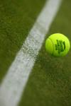 Wimbledon ball on grass 2010.Photo: Ella Ling.